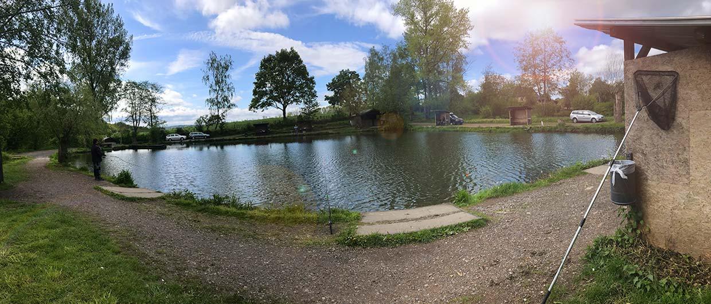 Idyllisch: Der große Forellenteich im Fisch-Park am Strullbach