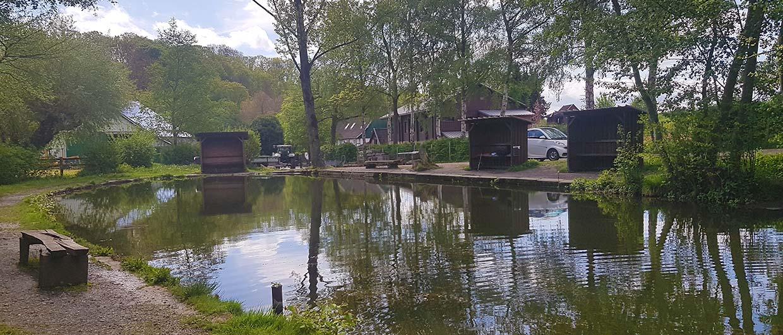 Naturbelassen und ruhig – Der kleine Forellenteich im Fisch-Park